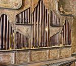 bamboo-organ