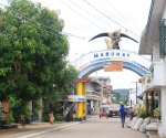 The Town of Polillo, Quezon